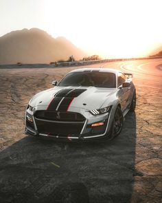 Shelby Gt, Ford Mustang Shelby, Mustang Cars, My Dream Car, Dream Cars, Ford Gt500, Exotic Cars, Muscle Cars, Bald Eagles