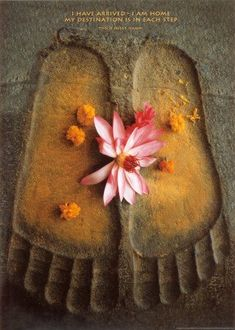 """""""I have arrived, I am home. My destination is in each step""""~ Thich Nhat Hanh"""
