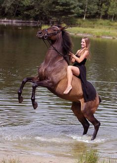 Image may contain: 1 person, horse, outdoor, water and nature
