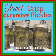 Sweet Crisp Cucumber Pickles -- for a canning pot full of cucumbers cups), need a double recipe of brine Sweet Pickle Juice Recipe, Sweet Gherkin Pickle Recipe, Sweet Pickle Recipes, Pickles Recipe, Jelly Recipes, Canning Sweet Pickles, Limoncello Recipe, Lime Pickles, Gastronomia