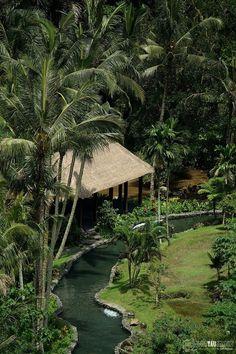 Ubud Green Paradise,... by Taufik Danadidjaja on 500px