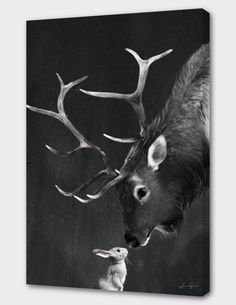 """elk and rabbit"", Numbered Edition Canvas Print by Laura Graves - From $89.00 - Curioos"