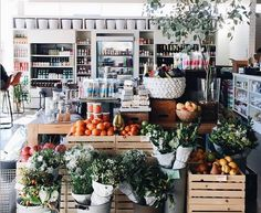Best Places to Sample the Food While You Shop in LA - Best Places to Sample the Food While You Shop in LA 45 Haute Living by Jeff Katz - Groceries are going gourmet around Los Angeles, with recent opening of amazing European-style food halls. From expo kitchens to in-house dining, check out our picks for the best places to shop and dine at the same time. - Stir Market