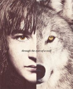 Bran and Summer