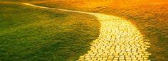 cropped yellow brick road
