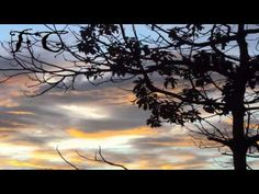 Soy parrandero - Emir Boscan y Los Tomasinos - YouTube Clouds, Celestial, Sunset, World, Youtube, Outdoor, Amor, Songs, Bonito
