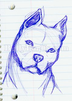 My first serious attempt at throwing down a rough sketch of a pit bull. Art Drawings Sketches Simple, Animal Sketches, Pencil Art Drawings, Animal Drawings, Cool Drawings, Drawings Of Dogs, Pitbull Drawing, Drawing Techniques, Art Sketchbook
