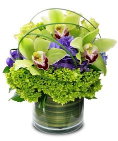 Cymbidium Delight - Green cymbidium orchids take center stage in this contemporary arrangement. The cylinder vase also includes purple and green hydrangea and bear grass loops. #KittelbergerFlorist #RochesterFlowers