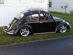 R's Beetle