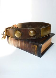 Antique Leather and Brass Dog Collar 'Pat' with padlock by MaisonDogLondon on Etsy https://www.etsy.com/uk/listing/153844403/antique-leather-and-brass-dog-collar-pat