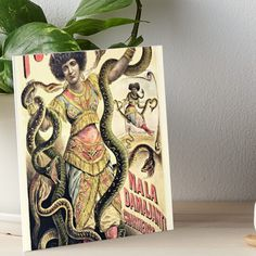 Velcro Dots, Desks, Art Boards, Vintage Posters, Snake, Charms, Walls, Shelves, Texture