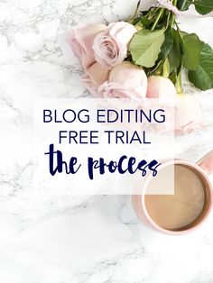 Ever wondered about our free trial? This is the process behind ours. Click through to learn about our blog editing free trial and how you can get one too!