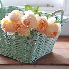 Artist Credit  @aprilsloves __________________________________________ #art#beautiful#still_life#vintage#vsco#vscocam#romantic#retro#retrolux#texture#beauty#flower#flowers#love#agameoftones#styling#propstylers#foodlovers#pottery#stilllifephotography#transfer_visions#tv_living#click_vision#gottalove_a_#rsa_vsco#antiques_r_us#ir_life_time#morning