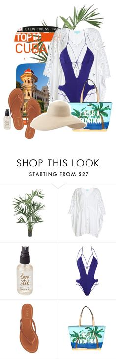 """Pack-and-go: Cuba"" by vanguard1113x ❤ liked on Polyvore featuring Nearly Natural, DK, Melissa Odabash, Olivine, Agent Provocateur, J.Crew, Kate Spade and Eric Javits"