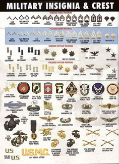 Displaying the insignia of ranks in the United States armed forces who fought is World War Private to Brigadier General. It also shows the badges and pins of different companies within the armed forces, each company had a different role during World War Military Ranks, Military Insignia, Military Weapons, Military Life, Military Art, Military History, Military Uniforms, Army Uniform, Special Forces