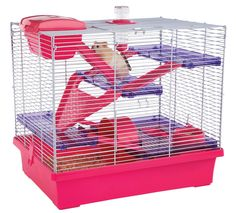 Extra large hamster or mouse cage in Pink and Purple. Suitable for Syrian and Russian hamsters.