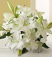 fresh every week, if I could afford it :) Stargazer Lily Wedding, Lily Bouquet Wedding, Floral Wedding, Wedding Flowers, Funeral Arrangements, Wedding Arrangements, Pretty Flowers, White Flowers, Fresh Flowers