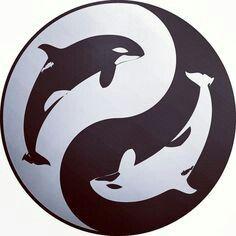 Orca tattoo Orca Tattoo, Dolphins Tattoo, Whale Tattoos, Baby Tattoos, Tattoo Art, Tatoos, Whale Sketch, Le Morse, Sea Life Tattoos