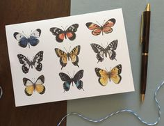 Butterflies Greeting Card | Etsy  #greetingcards #cards #etsy #etsyshop #butterfly #butterflies #illustration Butterfly Painting, Colored Envelopes, Plant Illustration, Greeting Cards, Hand Painted, Colours, Etsy Shop, Illustrations, Prints