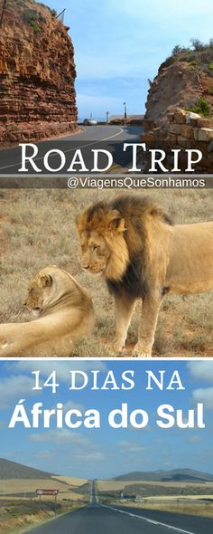 Roadmap South Africa, two weeks traveling by car across the country - Road trip - Dicas de Viagem Garden Route, Port Elizabeth, Photo Search, Pinterest Photos, Europe, Disneyland Resort, Coastal Style, Travel Guides, South Africa
