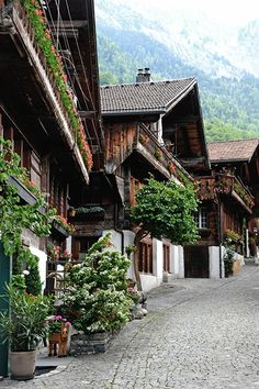 Brienz, BE Switzerland Oh The Places You'll Go, Places To Travel, Places To Visit, Hotel In Den Bergen, Beautiful World, Beautiful Places, Winterthur, Zermatt, Architecture