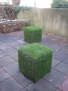 green gabion cubes                                                                                                                                                                                 More