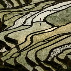 """Telling the story of Scale    Yuanyang's rice terraces are huge, but it's hard to tell the scale without reference. This is when people come into play. If you can place people in a """"strategic"""" location in a image, they become reference object to hint the scale of the image.    Join me at Jan 2013 China Photo Tour to Yuanyang!    more info at www.chinaphotoworkshop.com    #photographytips  #photoworkshops"""