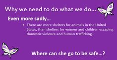 there are more animal shelters than domestic violence shelters, or homeless shelters.............