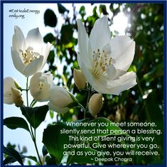 Give with grace 💕💖✨ Deepak Chopra, Meeting Someone, A Blessing, Blessed, Live