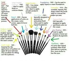 Make up brushes….I just use what ever to get the job done but apparently there is a specific job for each of these! :)