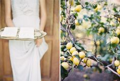 lemons + pretty. [photo by rylee hitchner / styling by ginny au / calligraphy by meagan tidwell]