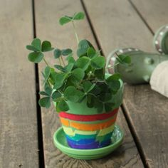 Watch luck bloom before your eyes with the best flower craft this side of the rainbow. Planting Shamrocks is a sure way to make your St. Patrick's Day extra lucky!