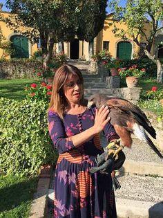 silvia-baracchi-falcon
