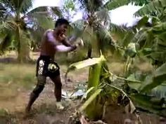 Chopping Trees in Thailand