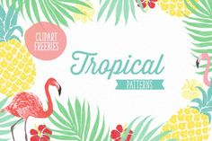 6 Vector tropical patterns + Clipart - Patterns - 1