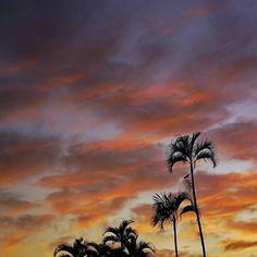Até parece praia.. mas é o nascer do sol em Assis. Hora de tomar café depois do lindo casamento do @airtoncoradassi e @laiscoradassi  #casamentolairton #assissp #conexaopontagrossaassis #lucioflaubert  #fotografiadecasamento #maringalavamosnos