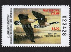 1995 Canada Geese  Artist: Neil Blackwell Alabama Dept of Conservation and Natural Resources Stamp