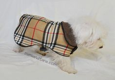 With this dog coat pattern you can make a cool dog coat suitable for fall or spring. Pattern available in six szes with step by step easy tutorial Dog Clothes Patterns, Coat Patterns, Dog Coat Pattern, Dog Crafts, Dog Jacket, Free Dogs, Little Birds, Best Dogs, Sewing Projects