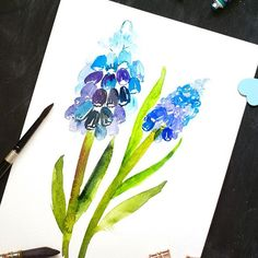 Day 17: Muscuri I haven't heard of this flower before. I've seen it but never knew what t was called. The blues were lovely to paint. . . . #artistsofinstagram #illustratorsofinstagram #cbdrawaday #inkstruck #flowerillustration #watercolorflorals #createe