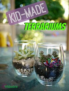 Kid-Made Terrariums...great gift idea.