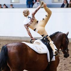 Vaulting, Horses, Instagram, Animals, Pretty Pictures, Nice Asses, Animales, Animaux, Animal