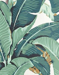 The Terrier and Lobster: Charlotte Olympia Banana Leaf Accessories Inspired by Hinson Martinique Wallpaper