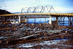 Cd'a was a logging town. My dad and brother were big time loggers in the day! Coeur D'alene, Post Card, Big Time, New Life, Brooklyn Bridge, Idaho, Brother, Live, Travel