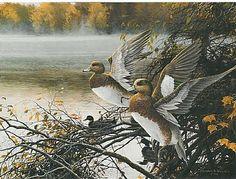 Misty River Widgeon - Widgeonas by Christopher Walden Wildlife Paintings, Wildlife Art, Landscape Paintings, Hunting, River, Bird, Art Prints, Ducks, Art Work