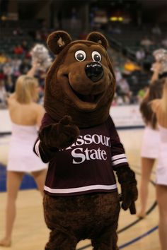 Missouri State Bears mascot, Boomer the Bear Missouri Valley, Northern Iowa, Southern Illinois, Cheerleading, Teddy Bear, Bears, D1, College Life, Conference