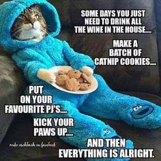 Grumpy Cat Memes added a new photo — with Christine Shaw and 25 others. Cat Quotes, Animal Quotes, Animal Memes, Animal Funnies, Cat Sayings, Animal Antics, Life Quotes, Funny Animal Pictures, Funny Animals