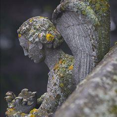 Detail at Nidaros Cathedral #Trondheim Photo: CH/www.visitnorway.com