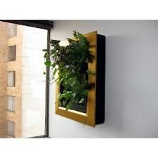 jardin vertical cuadros  vivos - Ventana