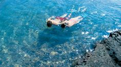 Fairmont Orchid Snorkeling! #travel #hotels #Hawaii