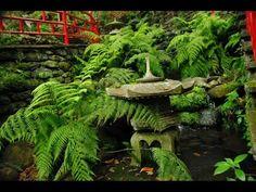 Fotos de Portugal - Madeira - Funchal - Jadín Tropical Monte Palace - Ja...